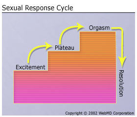 Adventures in Woman-Centered Sexuality: A Critique of Masters & Johnson's Human Sexual Response Cycle